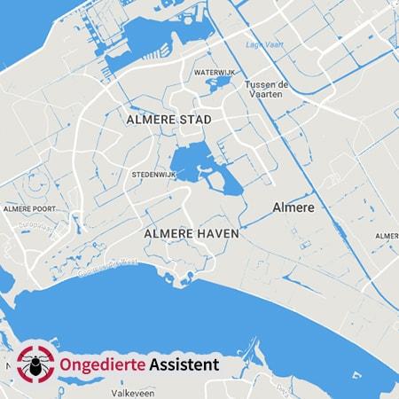 ongediertebestrijding Almere