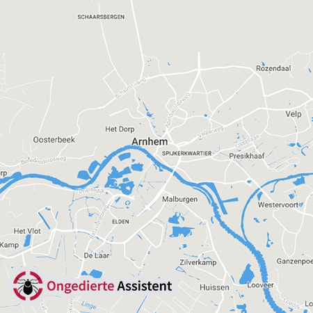 ongediertebestrijding Arnhem