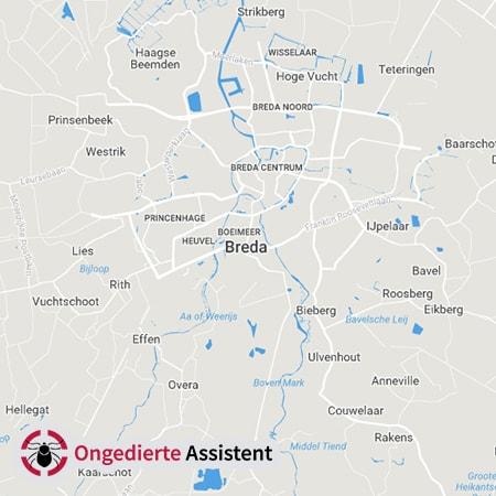 ongediertebestrijding Breda