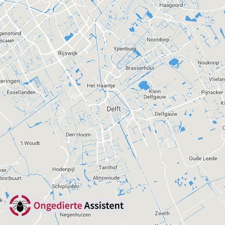 ongediertebestrijding Delft