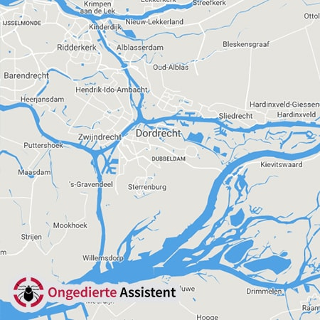 ongediertebestrijding-Dordrecht
