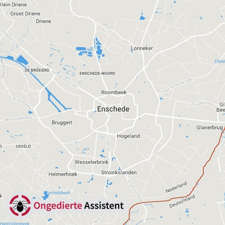 ongediertebestrijding Enschede