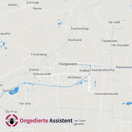 ongediertebestrijding Hoogeveen