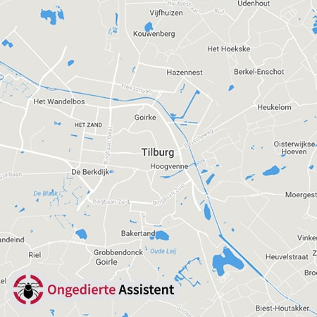 ongediertebestrijding Tillburg