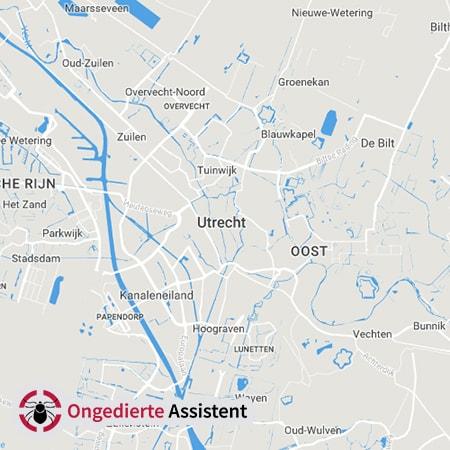 ongediertebestrijding Utrecht