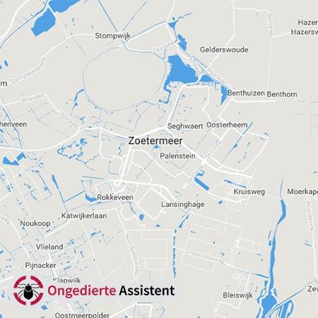 ongediertebestrijding Zoetermeer
