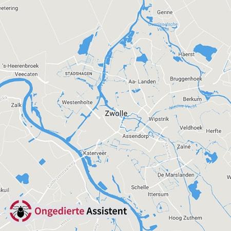 ongediertebestrijding Zwolle